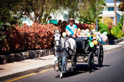 tenerife-horse-carriage